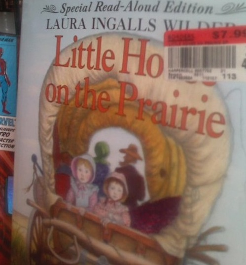 Photo Little Ho on the Prairie