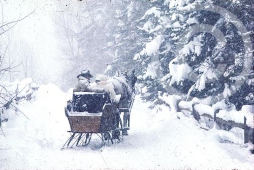 Photo of a horse sleigh in winter
