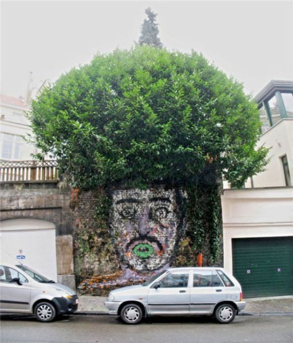 Photo of street art afro tree face