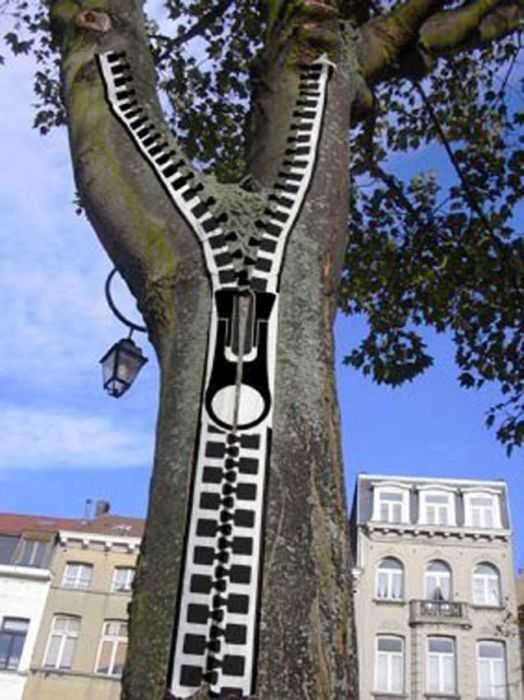 Photo of street art zipper tree