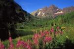 Photo of Maroon Bells in Aspen, Colorado